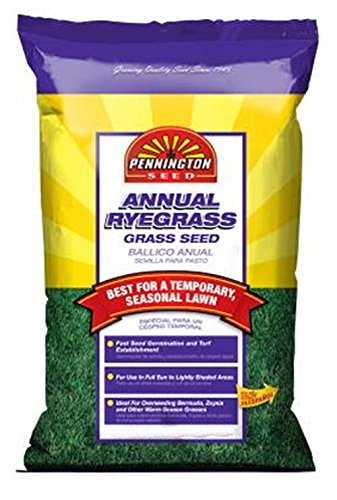 Pennington Annual Ryegrass to Overseed Warm Season Grasses, 10 lb
