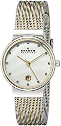 Skagen Silver and Gold Tone Mesh Watch