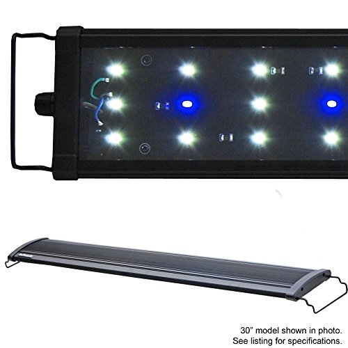Beamswork LED 1W 6500K HI Lumen Aquarium Light Freshwater Plant (DHL 72 6500K) by BeamsWork