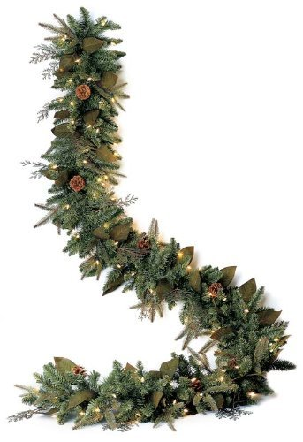 Bethlehem Lighting GKI Green River Spruce Battery Operated LED Garland with 3-Function Controller, 6'
