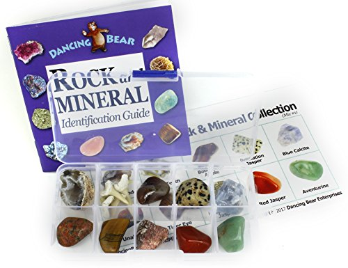 Rock And Mineral Collection 10 Piece Mix  1  In Box With 27 Page Rock   Mineral Book And Educational Id Card