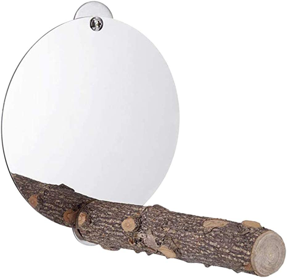 Eliky espejo de pájaro con perca espejo de loro, pies de juguete de molienda de madera de la naturaleza
