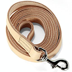 Logical Leather 6 Foot Dog Leash - Best for Training - Water Resistant Heavy Full Grain Leather Lead - Tan