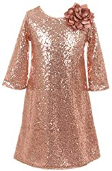 Shiny Sequin Short Sleeve Party Dress