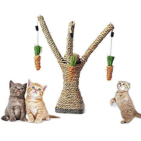 SODIAL Juguetes para raspar de gatos, Juego de gato Juguete para gatito, manteniendo el gato saludable: Amazon.es: Juguetes y juegos