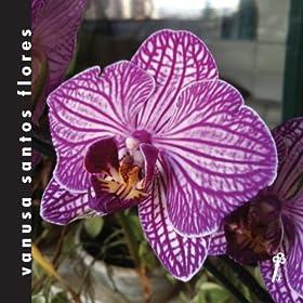 Amazon.com: Tapete da Sala: Vanusa Santos Flores: MP3 Downloads