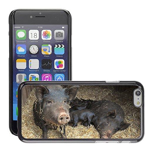 """Bild Hart Handy Schwarz Schutz Case Cover Schale Etui // M00133940 Schweine Ferkel Vieh Tierbaby // Apple iPhone 6 PLUS 5.5"""""""