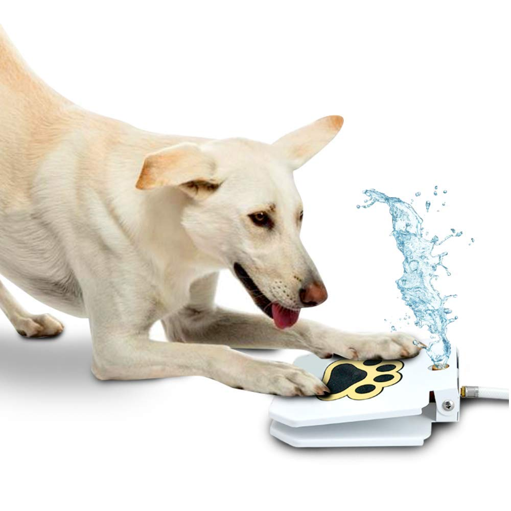 Trio Gato Outdoor Dog Pet Water Sprinkler Easy Activated Dog Water Fountain Toy - Upgraded 2019 + Bonus by Trio Gato