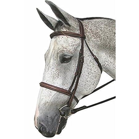 Henri de Rivel Pro Mono Crown Fancy Padded Bridle JPC Equestrian Inc