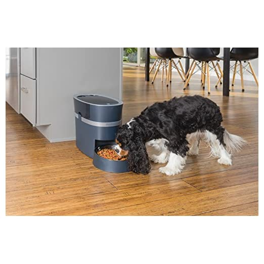 PetSafe-Smart-Feed-Automatic-Dog-and-Cat-Feeder-Smartphone-24-Cups-Wi-Fi-Enabled-App-for-iPh