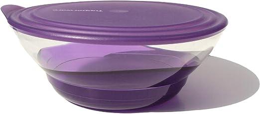4 Tupperware Set of Desert Plates 8 Acrylic Sheer Purple