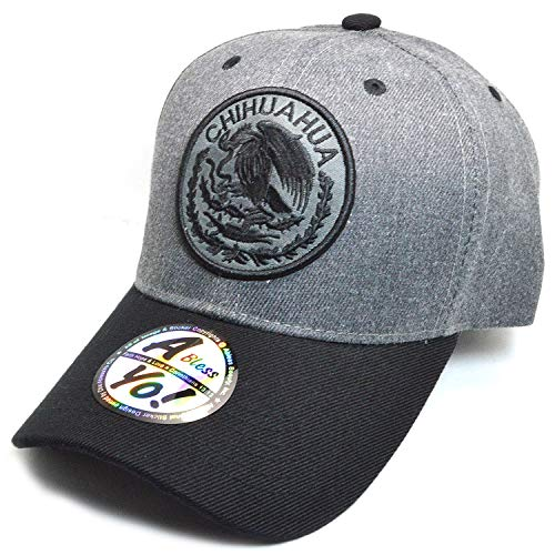 AblessYo Mexican hat Mexico Federal Logo Embroidered Curved Baseball Cap AYO6038 (Chihuahua)