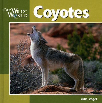 Coyotes (Our Wild World)