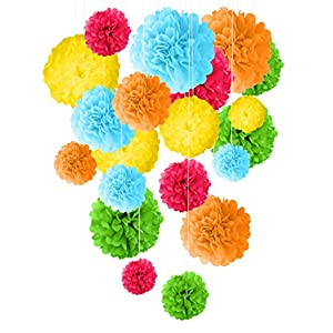 "Premium Tissue Paper Pom Pom Decoration - 20 Pcs 14"" 12"" 10"" 8"" Mix DIY Colorful Art Rainbow Craft Centerpiece Perfect Variety for Unicorn Birthdays Party Weddings Bridal Baby Showers Fiesta Festival"
