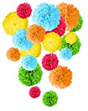 Tissue Paper Pom Pom Decoration - 20 Pcs 14'' 12'' 10'' 8'' Mix DIY Colorful Art Rainbow Craft Centerpiece Perfect Variety for Unicorn Birthdays Party Weddings Bridal Baby Showers Summer