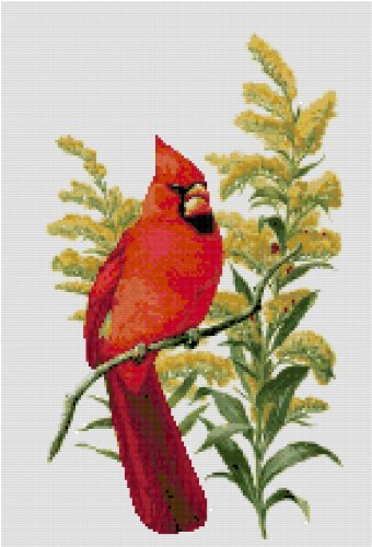 Kentucky State Bird (Northern Cardinal) and Flower (Goldenrod) Counted Cross Stitch Pattern