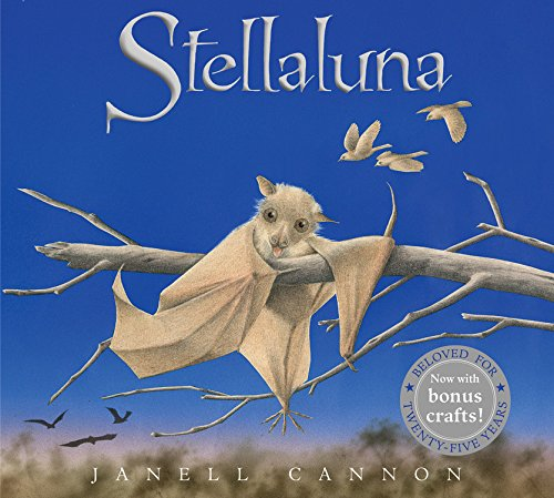 Image result for stellaluna