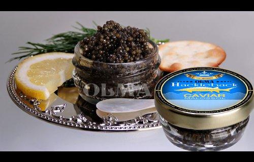 OLMA Black Caviar Hackleback Sturgeon 1 oz (28g) Glass -