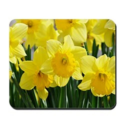CafePress - Trumpet Daffodil - Non-slip Rubber Mousepad, Gaming Mouse Pad