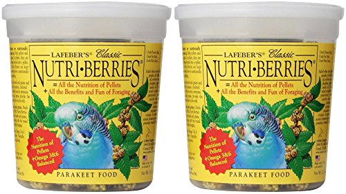 Parakeet Berry (Lafeber Classic Nutri-Berries for Parakeets, 2-Tubs of 12.5 oz)