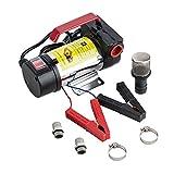 Orion Motor Tech 12V Bio Diesel Kerosene Fuel Transfer Pump Kit Nozzle Dispenser
