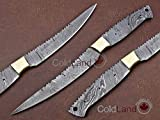 "ColdLand |11.25"" Hand Forged Damascus Steel Blank Blade Fish Fillet Knife Making Supplies"
