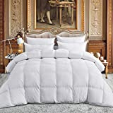 Egyptian Bedding 1000 Thread Count Full / Queen Oversized Siberian Goose Down Comforter