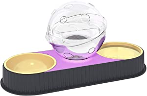 Dog Cat Pets Water and Food Bowls Set,Detachable Double Dog Cat Automatic Feeders for Dogs/Cats or Small Pets Include Filter Cover Add Non-Slip Bottom (Grey)