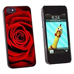 Graphics and More Red Rose - Snap-On Hard Protective Case for Apple iPhone 6 4.7 - Non-Retail Packaging - Black WANGJING JINDA