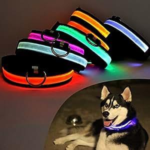 kangOnline Collar de Nailon LED para Perro, Gato, luz Intermitente, Seguridad Nocturna, Recargable por USB, Luminoso, para Cachorros S-XL, Small