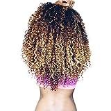3 Tone Ombre Brazilian Virgin Hair Bundles T1B/4/27 Honey Blonde Ombre Curly Human