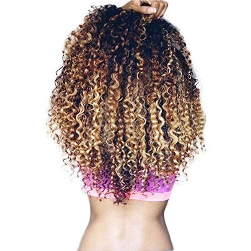 3 Tone Ombre Brazilian Virgin Hair Bundles T1B/4/27 Honey Blonde Ombre Curly Human Hair Extensions Unprocessed Weave Hair Weft 3 Bundle Deals Deep Wave Ombre Brazilian Hair (20 22 24, T1B/4/27)