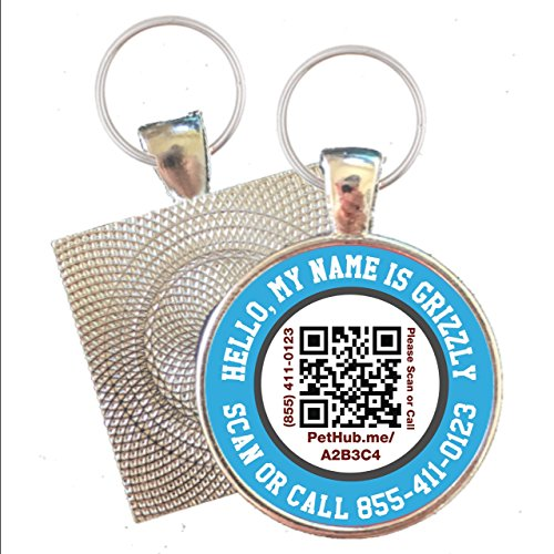 HELLO MY NAME IS Scannable QR Silver ID Tag for Cats and Dogs ()