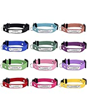 Cat Collar Personalized Engraved Korean Velvet Cat ID Collars with Breakaway Safety Release Buckle Custom Stainless Steel Lettering cat Collar with Pet Name and Phone Number