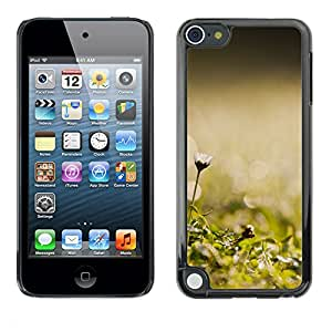 Hot Style Cell Phone PC Hard Case Cover // M00102231 nature morning grass // Apple ipod Touch 5 5G 5th