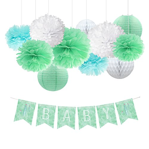 NICROLANDEE Cactus Baby Shower Decoration Kit Mint Green Tissue Pom Poms Eyelet Paper Lantern White Hanging Honeycomb Ball Watercolor Party Banner Fiesta Baby Shower 1st Birthday Gender Reveal Decor