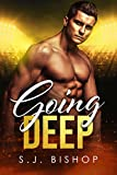 going deep a second chance romance bad ballers book 2