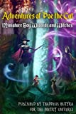 img - for Adventures of Poe the Cat: Miniature Boy, Wizards and Witches (Volume 2) book / textbook / text book