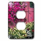 3dRose Danita Delimont - Gardens - USA, Alaska, Chena Hot Springs. Panorama of old truck and flowers. - Light Switch Covers - 2 plug outlet cover (lsp_278374_6)