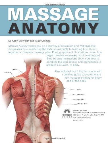 Massage Anatomy Amazon Abigail Ellsworth Peggy Altman