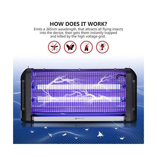 YUNLIGHTS Zanzariera Elettrica, 30W Lampada Antizanzare Elettrica Interno con Luce UV e Cassetto Raccogli, Lampada… 2 spesavip