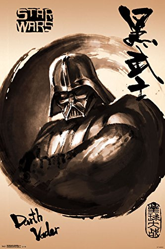 Trends International Star Wars Vader Painting Collector's Ed