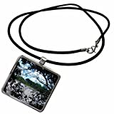 3dRose Florene Water Landscape - Morikami Lake - Necklace With Rectangle Pendant (ncl_18664_1) offers