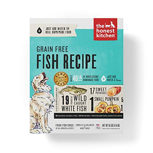 Honest Kitchen Human Grade Dehydrated Grain Free Fish Dog Food 10 lb - Zeal (Best Dog Food For Ibs)