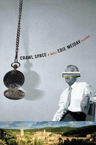 Download Crawl Space: A Novel pdf epub