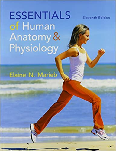 Amazon.com: Essentials of Human Anatomy & Physiology & Modified ...