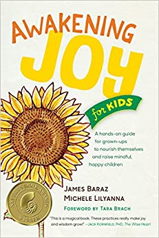 image for Awakening Joy for Kids: A Hands-On Guide for Grown-Ups to Nourish Themselves and Raise Mindful, Happy Children