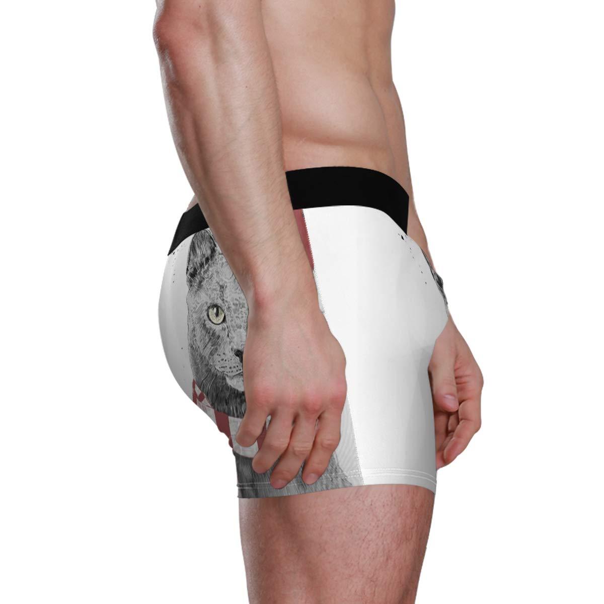 Xma Cat Vipsk Seamless Stretch Mens Polyester Boxer Briefs Underwear 1-Pack Set