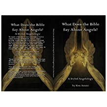 What Does the Bible Say About Angels?: A Styled Angelology (What Does the Bible Say About... Book 1)
