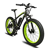 Extrbici Electric Bike Cruiser Bicycle XF660 1000W Motor 48V 16AH Panasonic Battery eBike for Adults Mens 4.0 x 26 Inch Fat Tire Hydraulic Brake Shimano 7 Speeds Pedal Assist LCD Display (green)